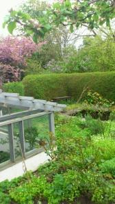 Trädgård 3